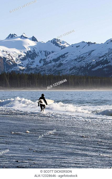 Surfer walking into the ocean along the Kenai Peninsula Outer Coast, South-central Alaska; Alaska, United States of America
