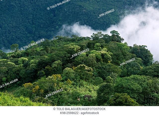 El Soch, zona Reyna, departamento de Uspantan,Guatemala, Central America
