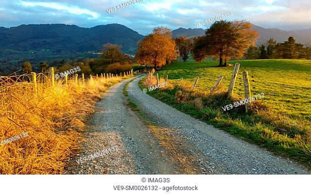Trail, meadows and rural landscape near Ceceda village, Nava municipality, Asturias, Spain