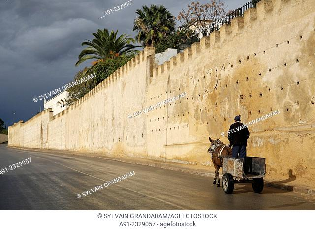 North Africa, Morocco, City of Fez (Fes), Medina, cart along the ramparts