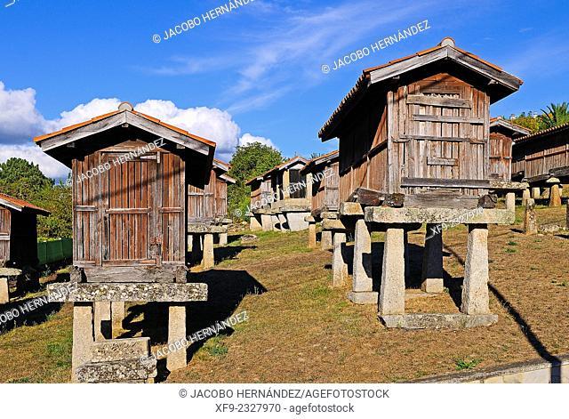 Hórreos(traditional granary).A Merca.Ourense province.Galicia.Spain