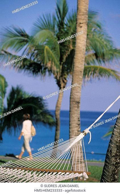 Bahamas, New Providence and Paradise Island, Nassau, hammock and palm trees in the park of Hotel One and Only Ocean Club