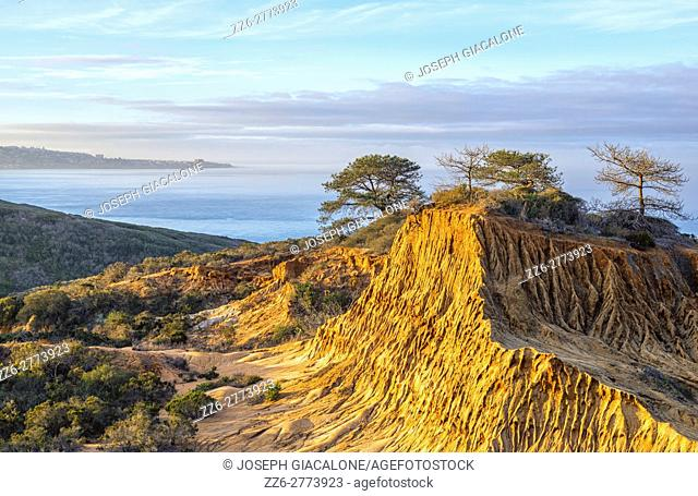 Broken Hill and ocean view. Torrey Pines State Natural Reserve in La Jolla, San Diego, California, USA