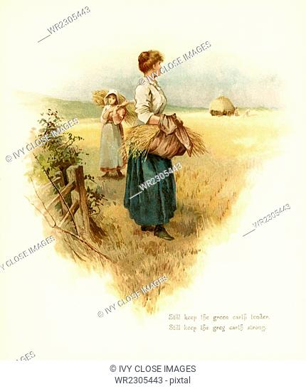 The caption for this illustration reads: Still keep the green earthe tender, still keep the grey earth strong. Here two women are working in the hay fields