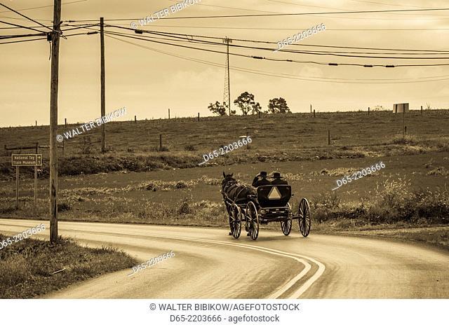 USA, Pennsylvania, Pennsylvania Dutch Country, Paradise, Amish horse and buggy on Paradise Lane