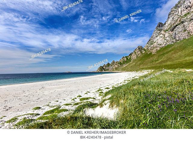 Sandy beach of Bleik, Vesteralen, Norway