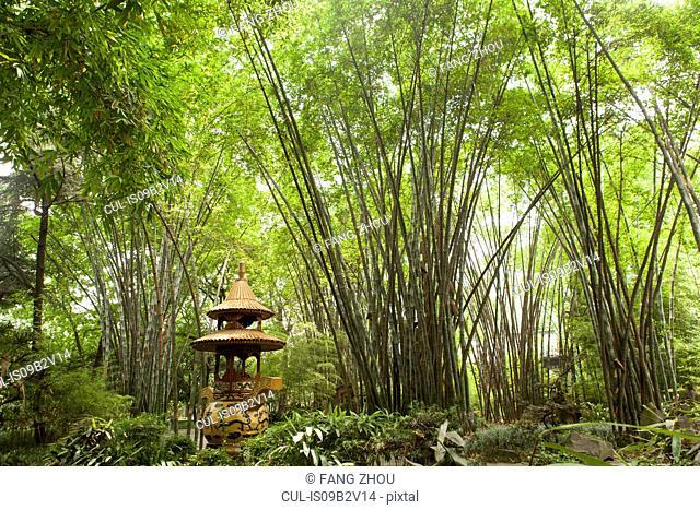 Pagoda in green bamboo forest, Wang jiang lou park, Chengdu, Sichuan, China