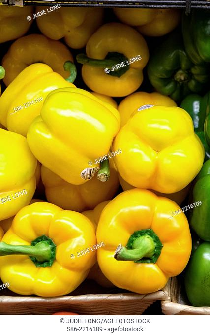 Yellow Peppers, Displayed in an Upright Open Carton, at a Manhattan, New York City Food Market