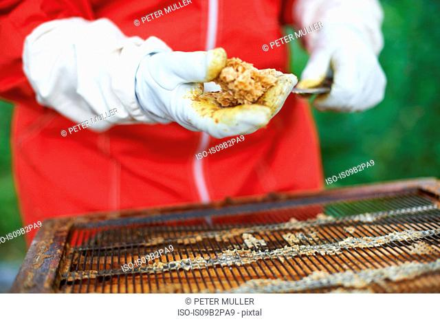 Beekeeper taking honey from hive, close-up
