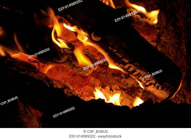 log on the fire
