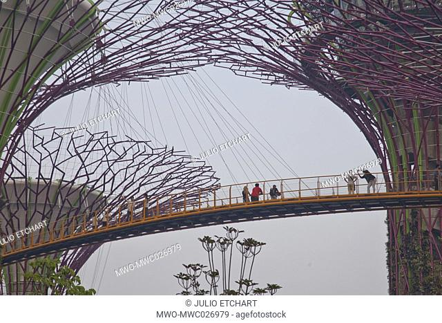 Tourists visit the Sky Walk at Gardens by the Bay in Singapore