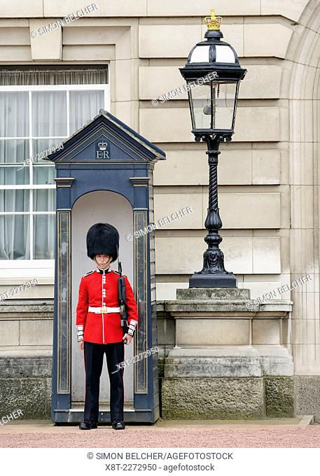 Guardsman from the Queens Guard Outside Buckingham Palace, London, England, United Kingdom