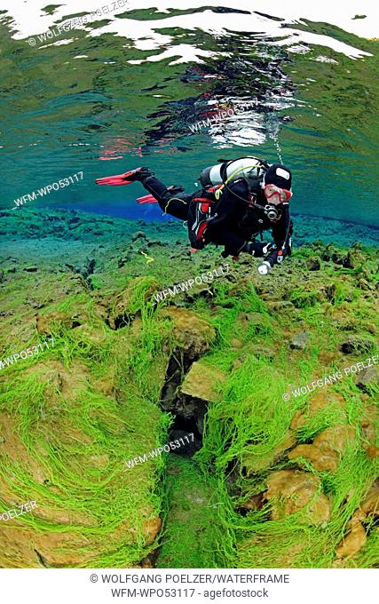 Scuba diving in Silfra, Thingvellir National Park, Iceland