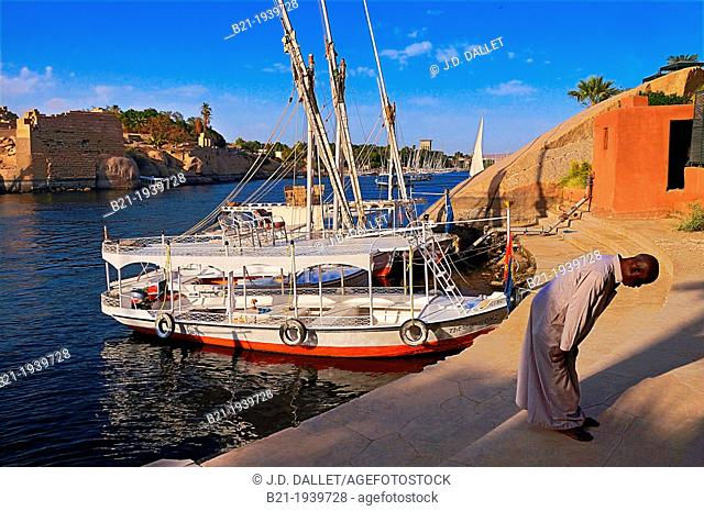 Praying by the feluccas on the Nile river at Aswan, Elephantine Island in background, Egypt
