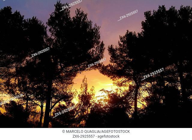 Dawn at Prats de Lluçanes village countryside, Osona region. Barcelona province, Catalonia, Spain