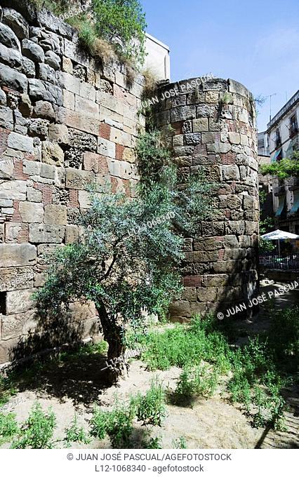 Roman wall, Barcelona, Catalonia, Spain