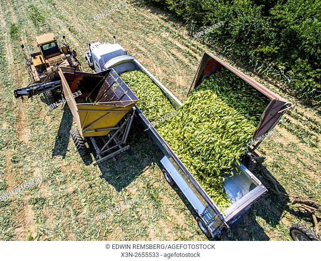 Aerial of corn being dumped into a tractor trailer at Bluestem Farm in Chestertown, MD