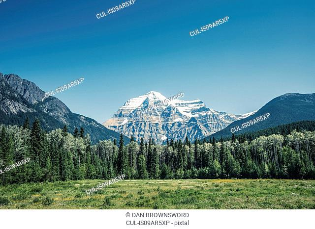 View of snow capped mount Robson, Canadian Rockies, British Columbia, Canada