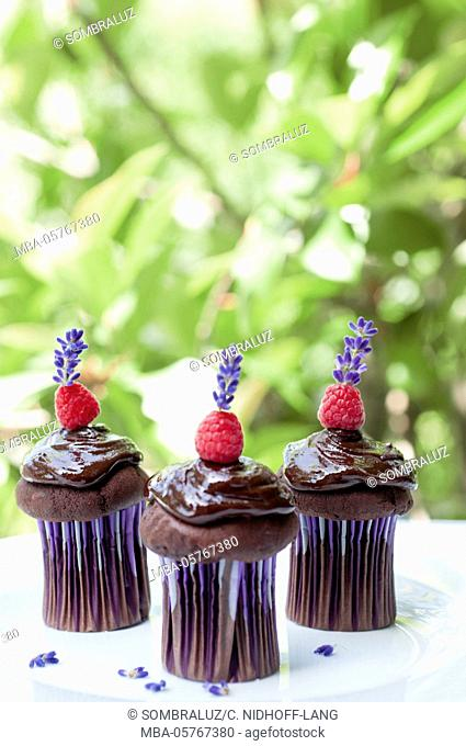 chocolate muffins with raspberry and lavender