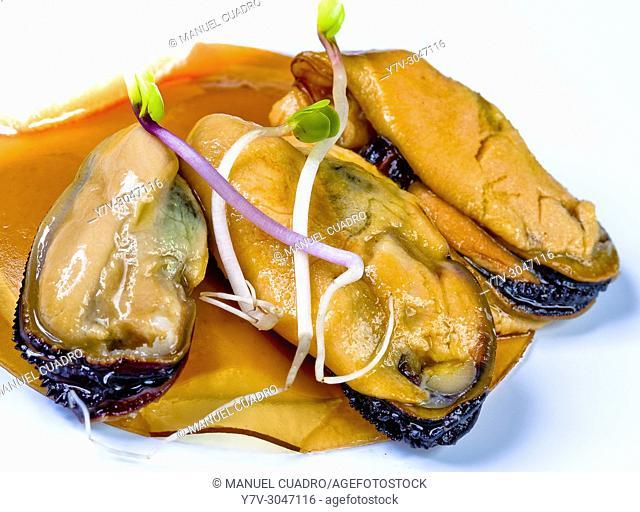 Mejillones (Mussels) abiertos al vapor sobre crema de anchoas en salazón y sorbete de campari