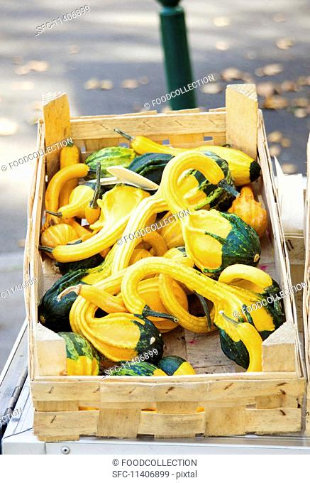 Green and yellow ornamental squash in a wooden crate