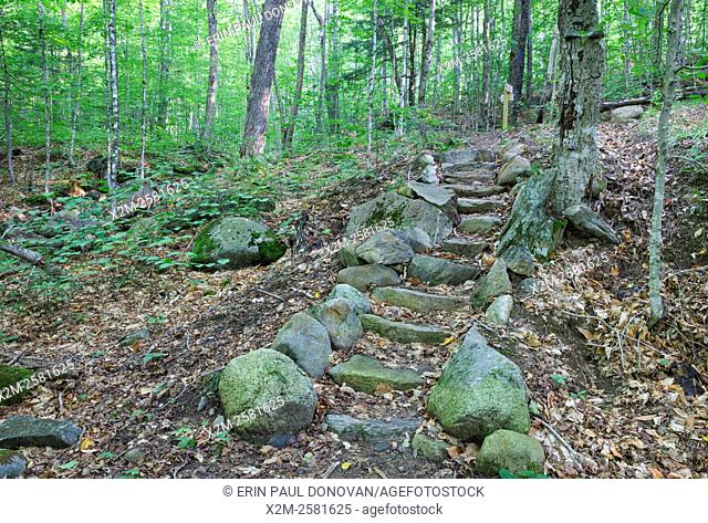 Stone staircase in Warren Town Forest in Warren, New Hampshire during the summer months