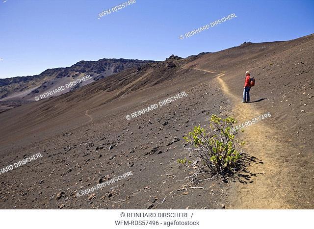 Tourist at Crater of Haleakala Volcano, Maui, Hawaii, USA