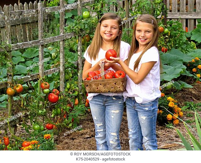 twins sisters with basket of tomatoes