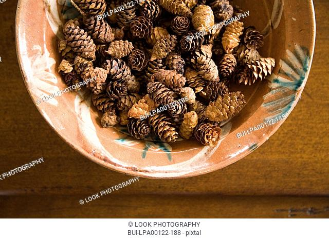 Detail of bowl filled with miniature pinecones