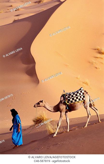 Tuareg with camel. Merzouga Dunes. Morocco