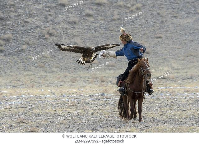 The eagle calling competition (after the eagle is released from a mountain top it to land on the hand of the hunter) at the Golden Eagle Festival near the city...
