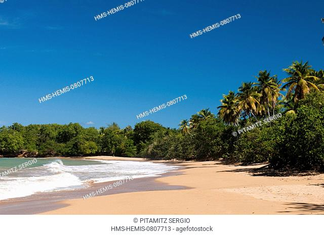 France, Guadeloupe (French West Indies), Basse Terre, Deshaies, Cluny Beach