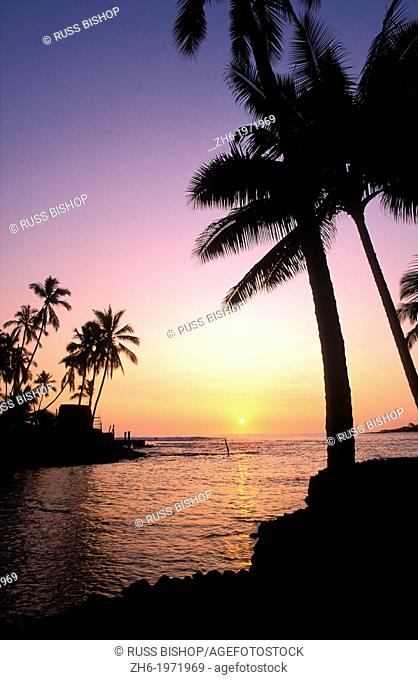 Silhouetted palms and heiau at sunset, Pu'uhonua O Honaunau National Historic Park (City of Refuge), Kona Coast, The Big Island, Hawaii USA