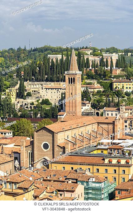 High angle view of Sant'Anastasia cathedral. Verona, Veneto, Italy