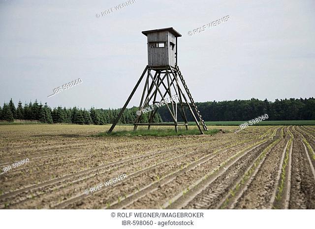 Raised blind or raised hide on field