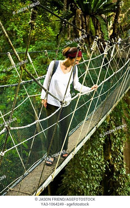 Sabah Malaysia, Borneo, Kinabalu National Park  Tourist walking the jungle canopy walkway at Poring Hot Springs