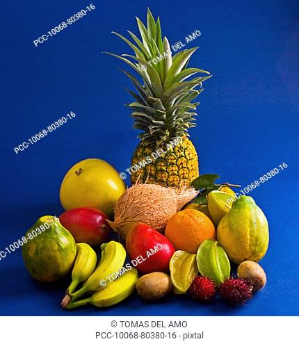 Studio shot of a variety of tropical fruit