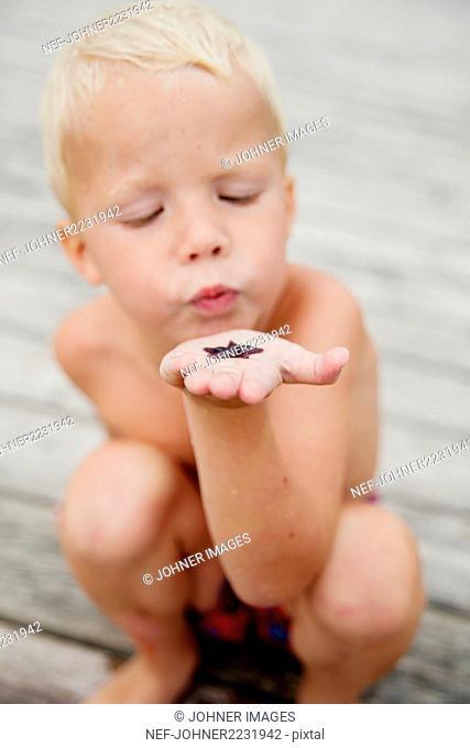 Boy looking at a starfish