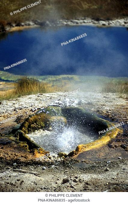 Yellowstone national park, West Thumb Geyser Basin, Wyoming, United States of America, USA, North America