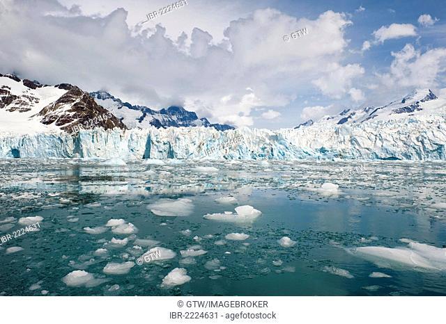 Moltke Bay, snow-covered mountains, South Georgia, Antarctica