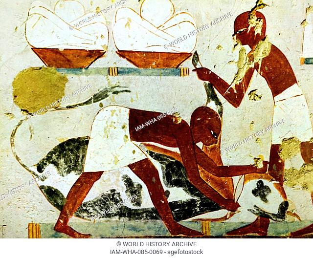 Painting from the tomb of an ancient Egyptian official, Djeserkaraseneb, depicting butchers with a cow. Dated 18th Dynasty