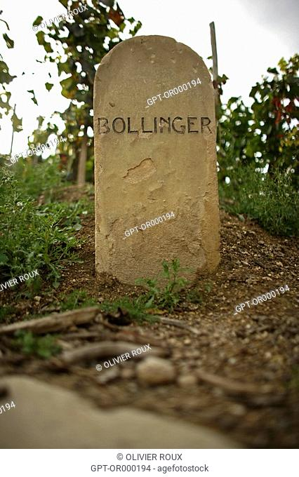 STONE MARKERS FROM THE VINEYARDS OF THE GREAT CHAMPAGNE MAKERS, BOLLINGER, MARNE 51