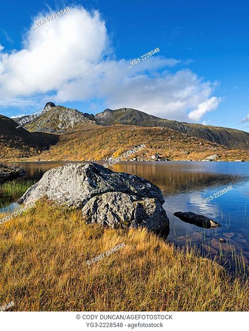 Autumn mountain landscape at late Urtjønna, Vestvågøy, Lofoten Islands, Norway