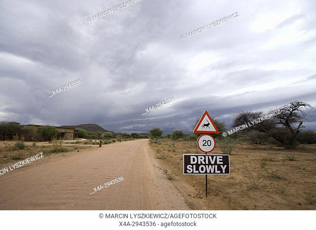 An road in conservation area, Okonjima Plains, Namibia