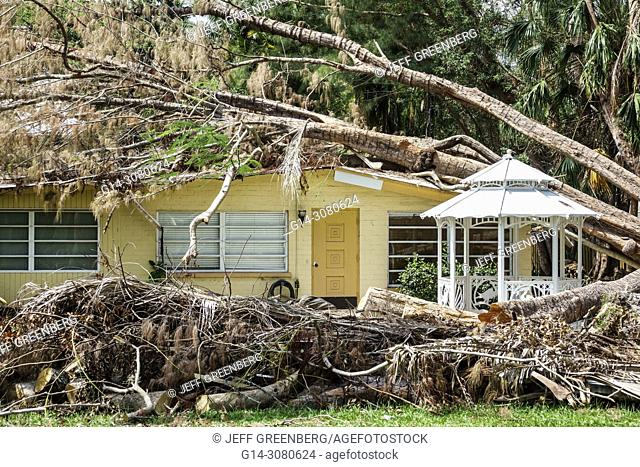 Florida, Fort Ft. Myers, house home residence, storm damage destruction aftermath, fallen tree Hurricane Irma, danaged roof, tree trunk