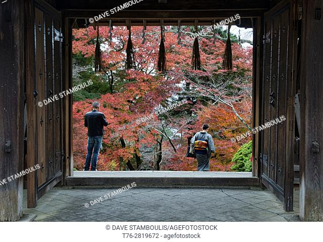 Looking out at fall, Bishumondo Temple, Kyoto, Japan