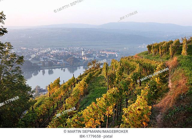 View of Mautern on the Danube river as seen from the Steiner Kreuz cross, Wachau valley, Waldviertel region, Lower Austria, Austria, Europe