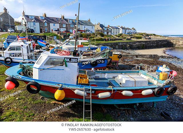 Fishing boats at Craster harbour, Northumberland, England, UK