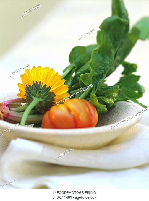 A Single Beefstake Tomato on a Plate