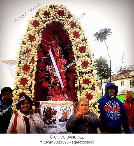 Pilgrims carry an image of the Virgin of Guadalupe during the annual pilgrimage to the Our Lady of Guadalupe basilica in Mexico City, Mexico
